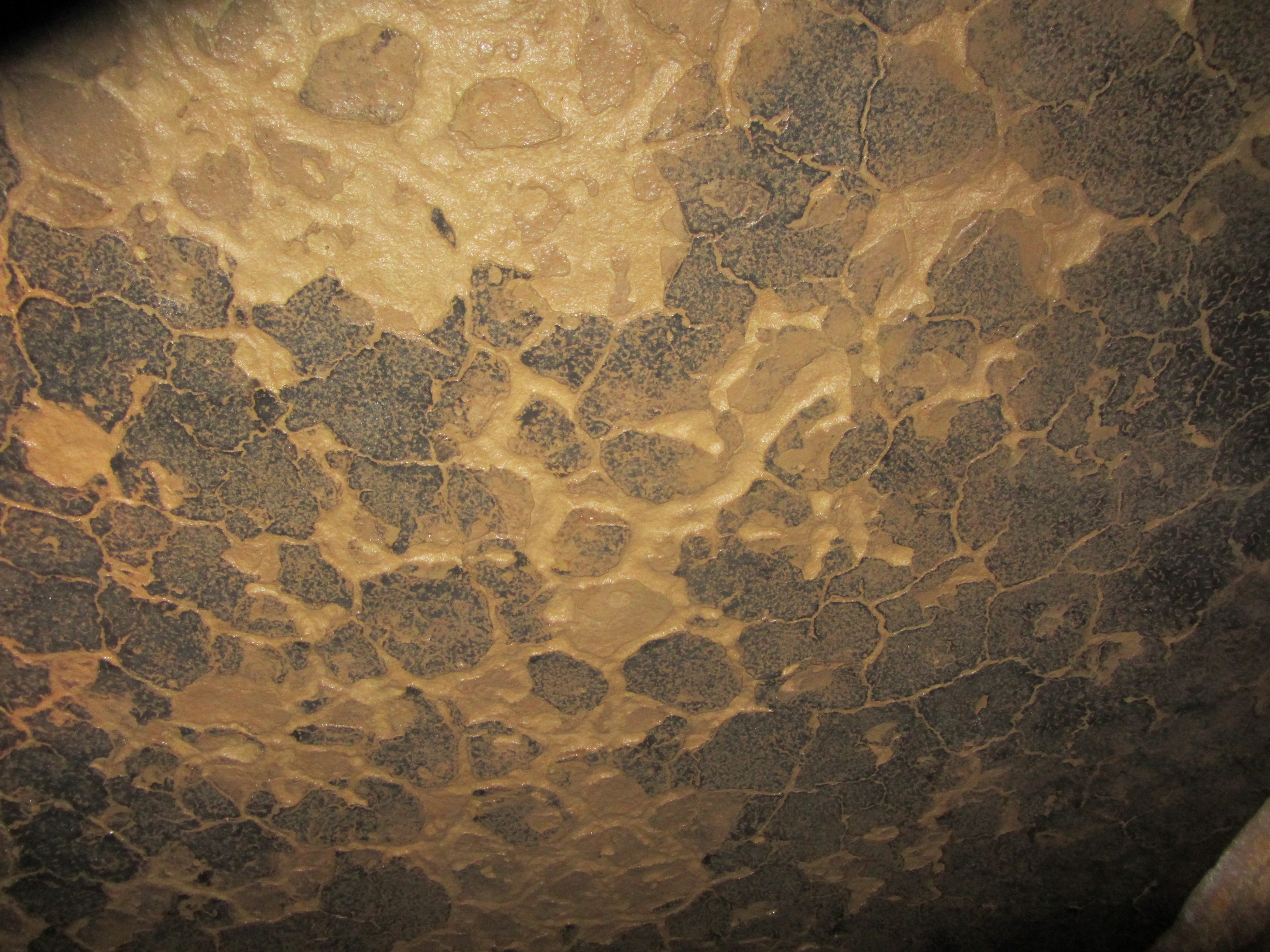 Ceiling mudcracks